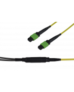 tML® - FO Micro Distribution Trunk Cable both sides 8x MPO/MTP® Female 96E9/125µ OS2 LSHF, Type C, Length: xxxxx