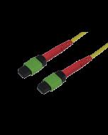 tML® 24 - LWL Patchkabel beids. 1x 24F MPO Female 24E9/125µ OS2, Typ A, Länge: xxx in m