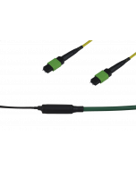 tML® Xtended - FO Trunk Cable both sides 2xMPO/MTP® with Pins 24E9/125µ OS2 LSHF, Type B, Length: xx in m