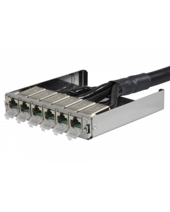 tML® - TP Trunk Cable both ends RJ45 DC 6fold Module w. LID Cat.6A UC Future 24x2xAWG26 LSHF for Rack Mount Enclosure 1U extendable